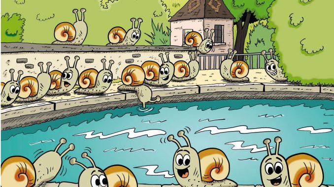 Fête des escargots à Villecomte
