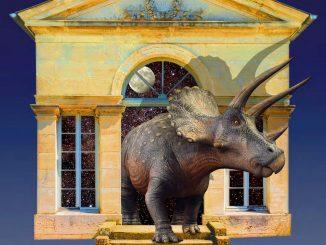 Un Triceratops au jardin