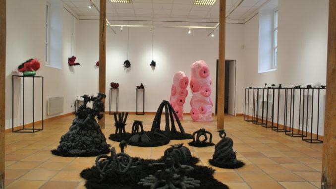 """Exposition """"Histoire Naturelle"""" de Vincent Crochard"""