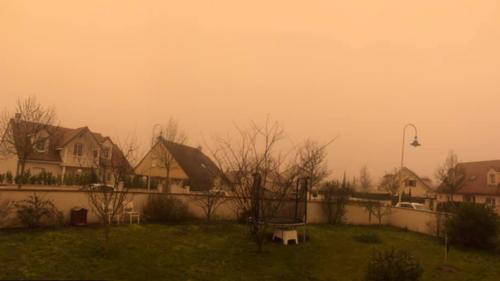 Dijon_Sahara_060221_06